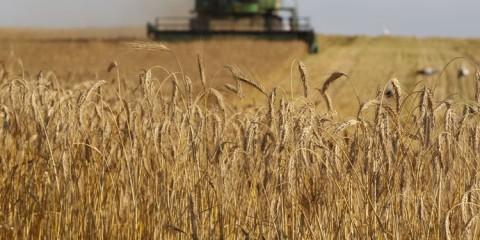 russia-iran-grain-exports.si