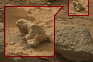 Alien hunters claim to have found evidence of life on Mars in photos taken by Curiosity rover. NASA scientist says there may be life on Mars, but only at the microbial level.