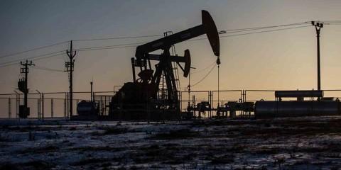 oil2016