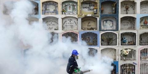 160124120907-anti-zika-fumigation-exlarge-169