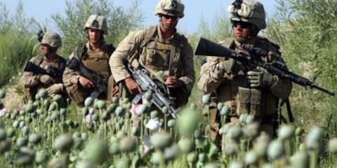 US-troops-opium-field-Afghanistan