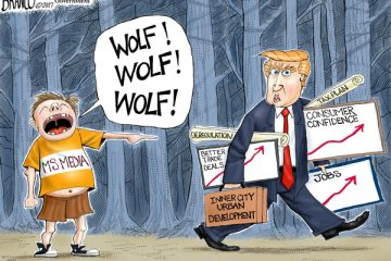 wolf-msmedia_large