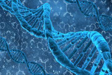 Cell-DNA-700-KB-Dollarphotoclub_58062355