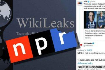 wikileaks on twitter