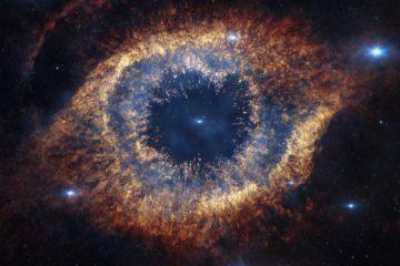alive-universe-conscious